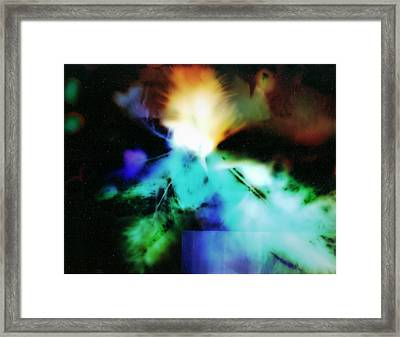 Playing With Light Feathers Framed Print by Paul Shefferly