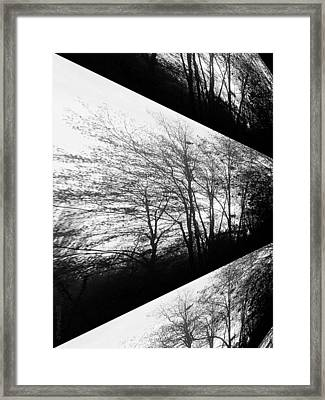 Playing With Shadows Framed Print by Mimulux patricia no No