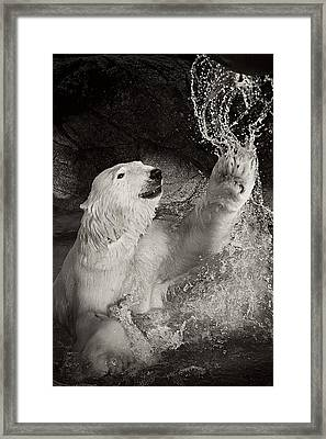 Framed Print featuring the photograph Playtime by Jessica Brawley