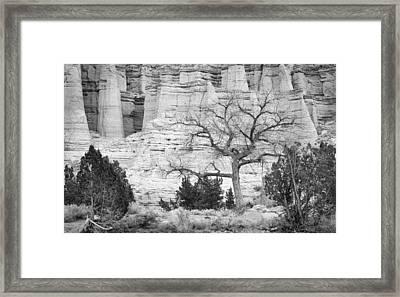 Plaza Blanca New Mexico Framed Print by Mary Lee Dereske