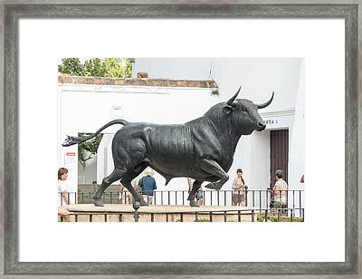 Plaza De Toros Sculpture Framed Print by Rod Jones