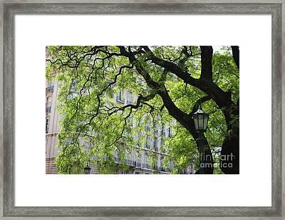 Framed Print featuring the photograph Plaza San Martin by Wilko Van de Kamp