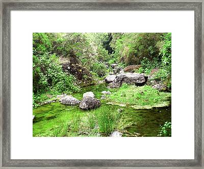 Pleasant Nature Framed Print