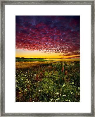 Pleasant Praire Framed Print by Phil Koch