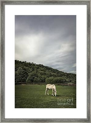 Pleasant Valley Sunday Framed Print
