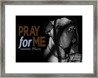 Framed Print featuring the digital art Please Pray For Me by Kathy Tarochione