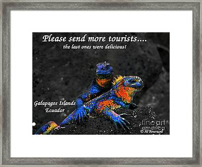 Please Send More Tourists - Marine Iguana Framed Print by Al Bourassa