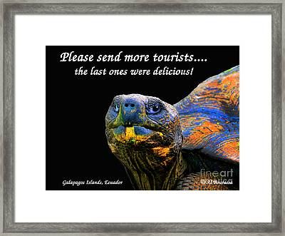 Please Send More Tourists - Tortuga Framed Print by Al Bourassa