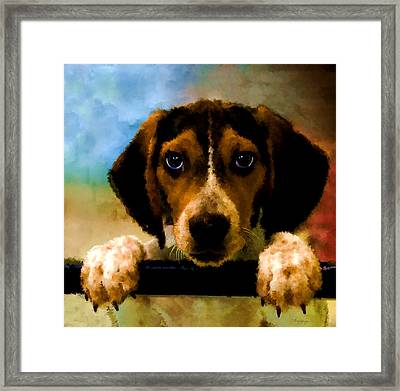 Please Take Me Home Framed Print by Thanh Thuy Nguyen
