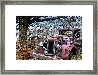 Pleasures From The Past Framed Print