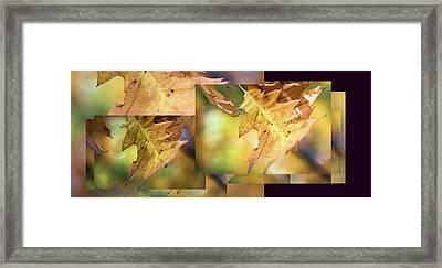 Pleasures Of Autumn -  Framed Print