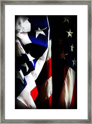 Pledge To The Usa Framed Print by Susie Weaver