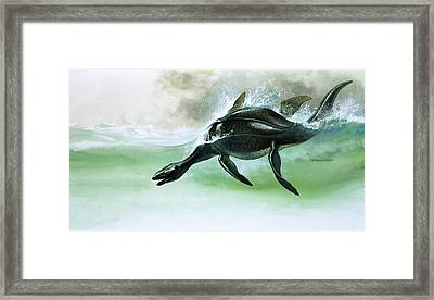 Plesiosaurus Framed Print by William Francis Phillipps