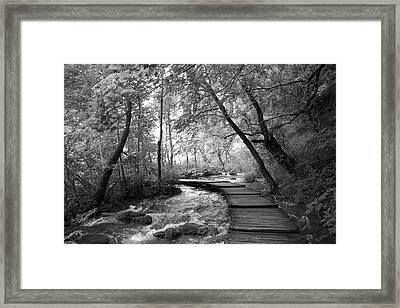 Plitvice In Black And White Framed Print