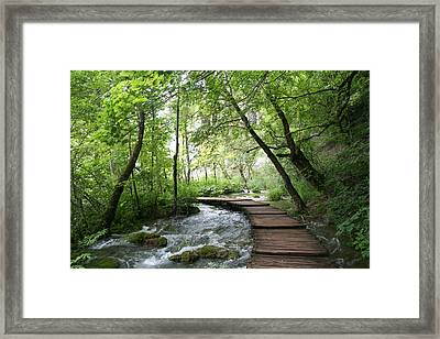 Plitvice Lakes National Park Framed Print