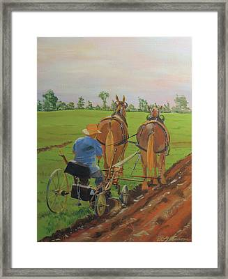 Plowing Match Framed Print