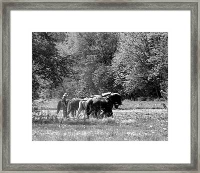 Plowing The Old Way 1  Framed Print