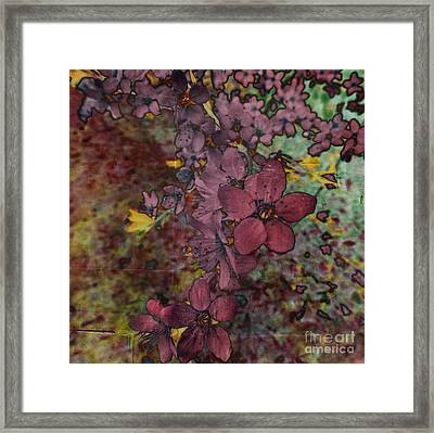 Framed Print featuring the photograph Plum Blossom by LemonArt Photography