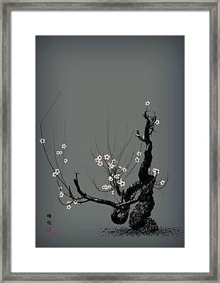 Plum Flower 3 Framed Print