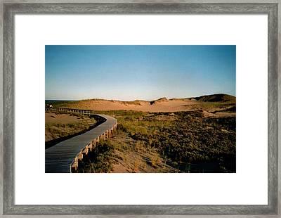 Plum Island Dunes Framed Print