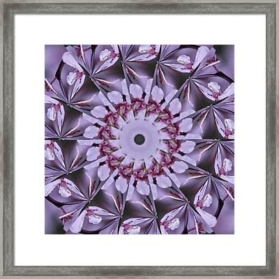 Framed Print featuring the photograph Plum Tree Kaleidoscope by Bill Barber