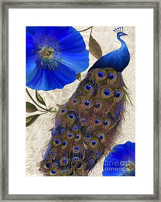Plumage Framed Print by Mindy Sommers