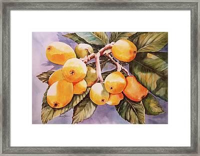 Plumb Juicy Framed Print by Roxanne Tobaison
