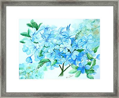Plumbago Framed Print by Karin  Dawn Kelshall- Best