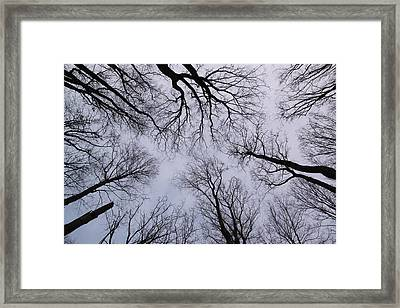 Plumbing The Depths Framed Print