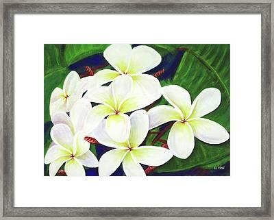 Plumeria Flower #289 Framed Print by Donald k Hall