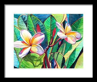 Tropical Flower Framed Prints