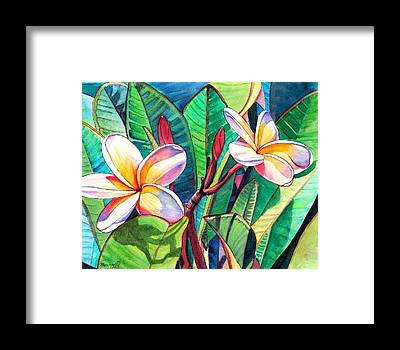 Hawaiian Flower Framed Prints
