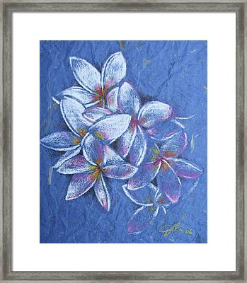Plumeria Framed Print by Jennifer Bonset