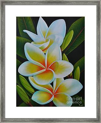 Framed Print featuring the painting Plumeria by Paula L