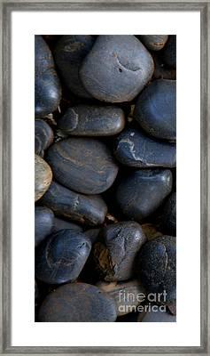 Plumeria Pebbles  - Part 1 Framed Print by Sean Davey