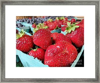 Plump Strawberries Framed Print by Janice Drew