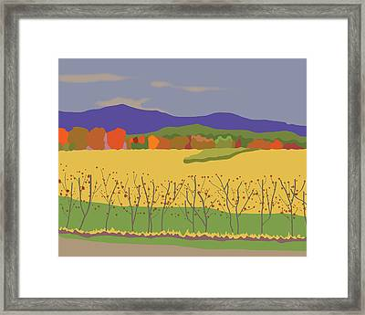 Plymouth Landscape Framed Print by Marian Federspiel