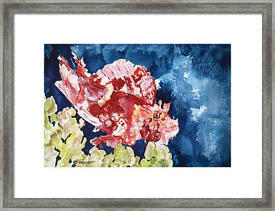 Png Leaf Fish Framed Print