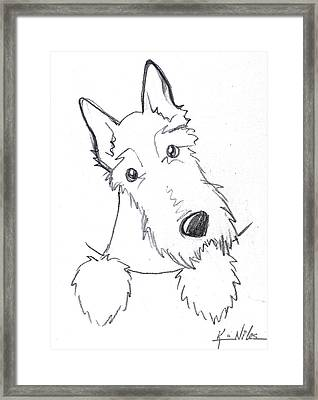 Pocket Scottie Sketch Framed Print