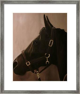 Pocketchange Framed Print by Donna Thomas