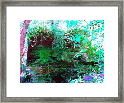 Framed Print featuring the photograph Pocono Hike by Susan Carella