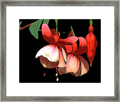 Pod Flower B Framed Print