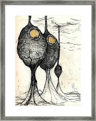 Pods Framed Print by Mark M  Mellon