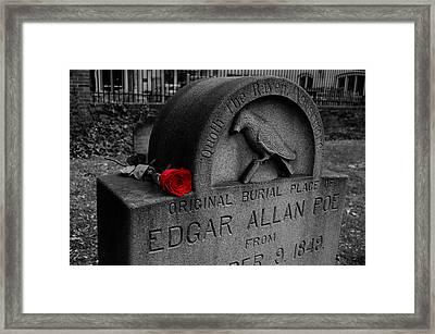 Poe Framed Print by Wayne Higgs