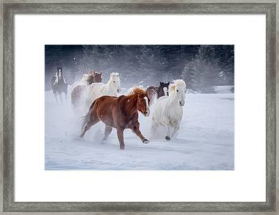 Poetry In Motion Framed Print by Jack Bell