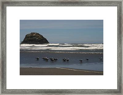Poetry In Motion Framed Print by Marie Neder