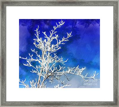 Pogonip Blues Framed Print