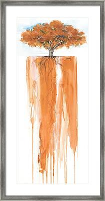 Poinciana Tree Orange Framed Print by Anthony Burks Sr