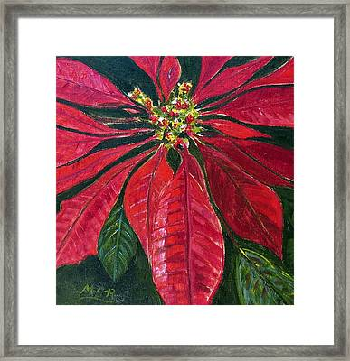 Poinsettia Closeup Framed Print by Maria Soto Robbins