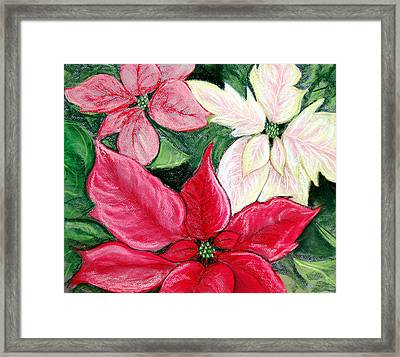 Poinsettia Pastel Framed Print by Nancy Mueller